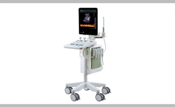 Ultra High Resolution Ultrasound System The bk3000 allows you to routinely see anatomy and micro-vascularization not seen with conventional ultrasound.